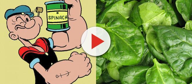 Popeye no estaba equivocado, las espinacas ayudan a la salud