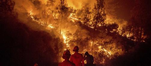 Trump anuncia el corte de fondos federales a California por incendios