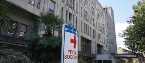 Napoli, donna in ospedale ricoperta di formiche.