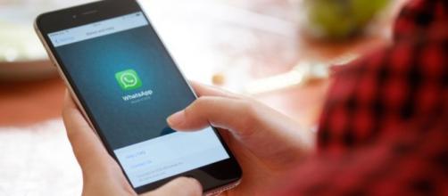Usuários do WhatsApp poderão perder todas as mensagens