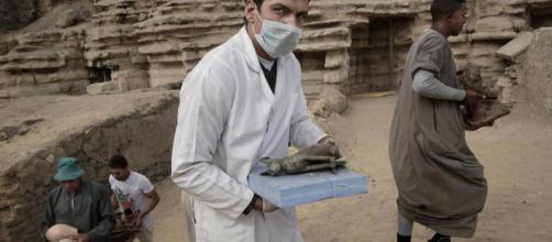 Egitto, mummie e simulacri di gatti e scarabei riportati alla luce