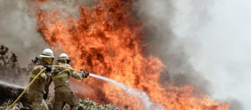 Incendios forestales están afectando al estado de California, Estados Unidos.