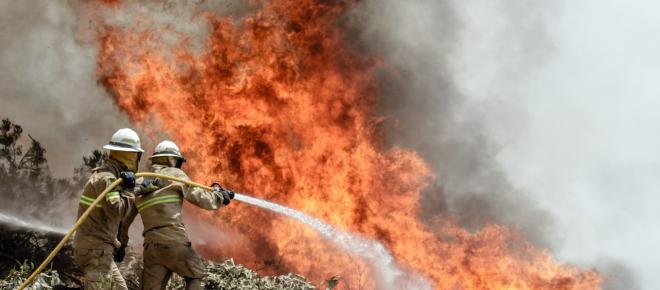 Incendios forestales provocaron 31 fallecimientos en California