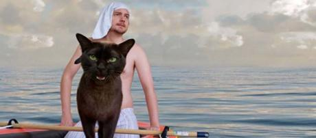 A cat owner uses his pets to recreate famous movie scenes. [Image @moviecats/Instagram