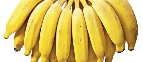 A banana é capaz de auxiliar na prevenção e no tratamento da anemia.