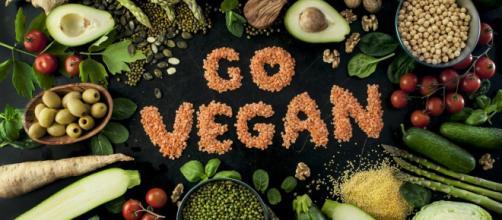 Os veganos são contra a exploração dos animais.