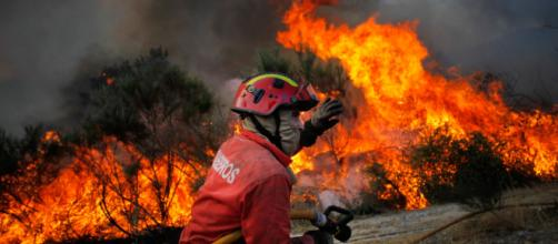 Incêndios com chamas impiedosas devastam florestas e cidades na Califórnia nos Estados Unidos