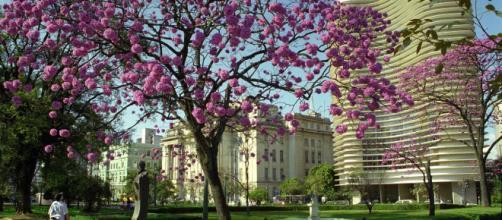 Os melhores passeios para descobrir a capital de Minas Gerais