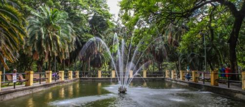 Nascentes do Parque da Água Branca. (foto reprodução)