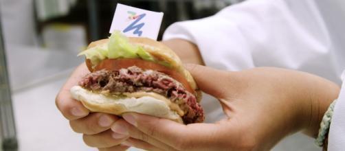Fake Meat o panacea del futuro, la carne clonata è realtà
