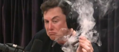 Elon Musk apareció fumando marihuana durante una entrevista - Infobae - infobae.com