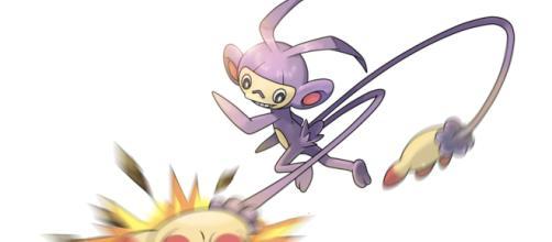 Ambipom é a evolução do Pokémon macaco Aipom.