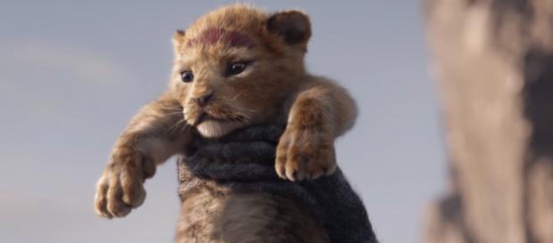 Live-action de 'O Rei Leão' ganha primeiro trailer.(Imagem: Yahoo!)