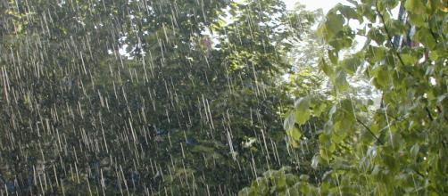 E' la pioggia, la causa della voragine di 12 metri.