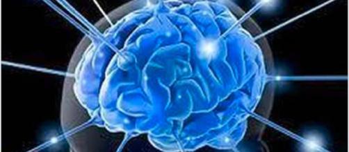 Quando moriamo ce ne rendiamo conto: il cervello continua ancora a funzionare - Il Mattino
