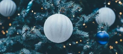 Accensione Albero di Natale a Sanremo 2018: domenica 2 dicembre in Piazza Borea d'Olmo - pixabay.com