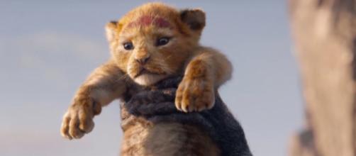 Lion King 2019 cast - The Lion King remake has added a brand new ... - digitalspy.com