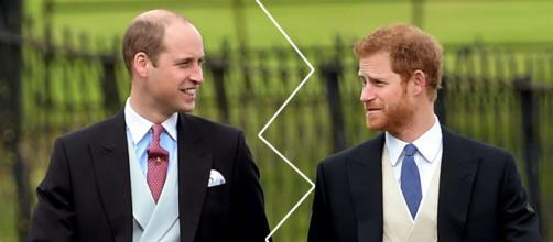 Principi Harry e William insieme