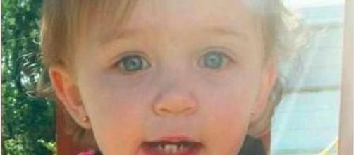 Pitbull azzanna bimba di un anno: la madre tenta di tagliargli la gola, ma non riesce a salvarla - Il Mattino