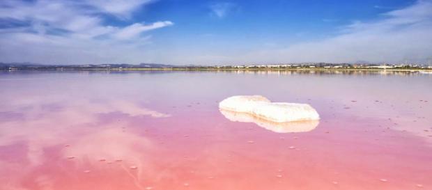 The Pink Lake of Torrevieja, Spain. [Image Alberto Casanova/Flickr]