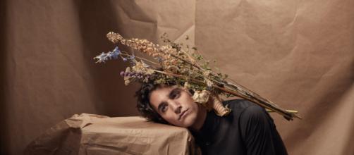 Tamino - Alexander Popelier Photography - zoob.be