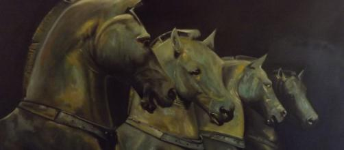 Le cheval nous demande attention et patience. Il en vaut largement la peine