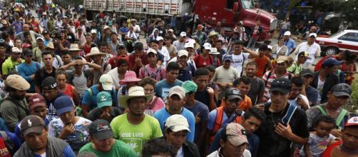 La caravana de inmigrantes reinicia su viaje hacia Estados Unidos