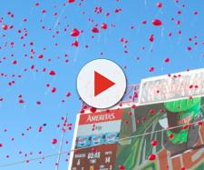 Red balloons flying. - [Kiley / Flikr]