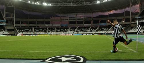O ano do Botafogo foi marcado por altos e baixos (Reprodução)