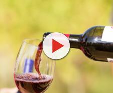 Bere alcol responsabilmente può ridurre il rischio di ricovero in ospedale.