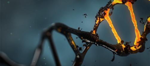 Un'intelligenza artificiale che che riconosce le malattie genetiche dal viso dei pazienti