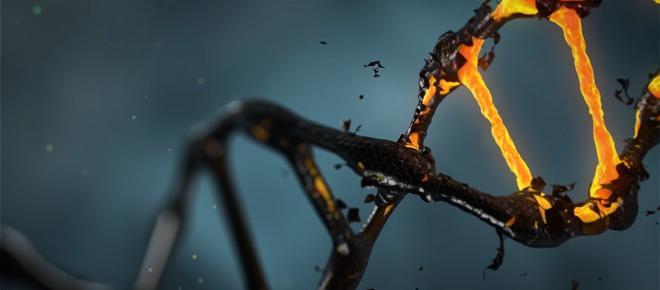 Un'intelligenza artificiale può riconoscere malattie genetiche dal viso di un paziente
