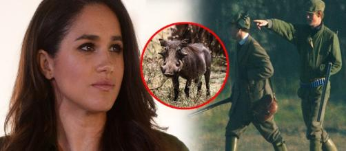 Meghan Markle Harry hunting refuse