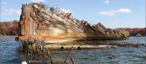 The Ghost Fleet in Mallows Bay. [Image source/John Bern YouTube video]