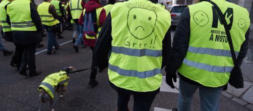 """Les """"Gilets jaunes"""" toujours mobilisés dans toute la France"""