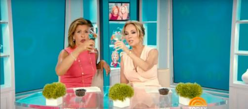 Kathie Lee Gifford goes wild for nicknames and had early sips of wine to toast the New Year on Today. [Image source-TODAY-YouTube]