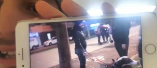 Dalas muestra el vídeo del encuentro y la agresión en su canal de YouTube