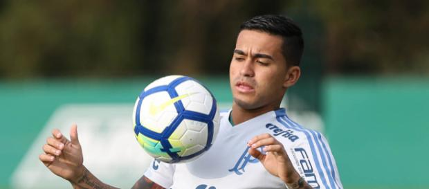 Dudu foi o melhor jogador do Campeonato Brasileiro.