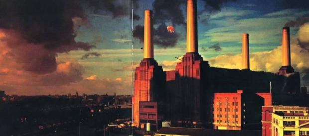 "Pink Floyd: perché ""Animals"" è un album fondamentale - Panorama - panorama.it"