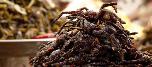 Deep-fried tarantulas - not your usual dish! [Image David Dennis/Flickr]