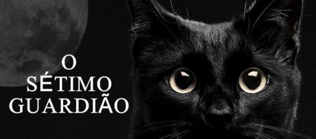 O gato León, um dos protagonistas da novela terá papel importante na salvação dos protetores da fonte. (Reprodução/Observatório de Televisão)