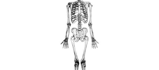 Londra, trovato nel fango del Tamigi antico scheletro di un uomo con gli stivali intatti
