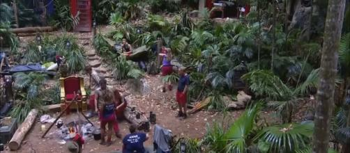 "Who has been ejected from ""I'm A Celebrity... Get Me Out Of Here"" so far. [Image I'm A Celebrity... Get Me Out Of Here/YouTube]"