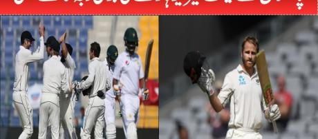 New Zealand celebrate victory. Photo-( image credit - cricket expert-Youtube.com)
