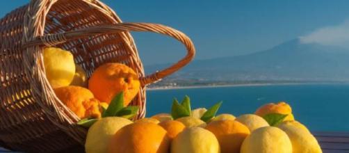 Limoni e agrumi di sicilia serviranno a fare una nuova bioplastica (fonte guidasicilia)