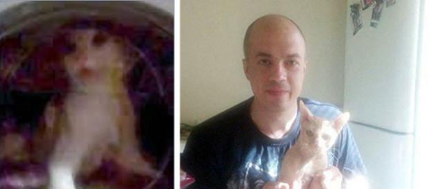 I-a trimis prietenei sale un video înfiorător cu pisica spălată într-o mașină pe un ciclu cu apă fierbinte - Foto: east2west news