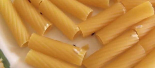 Pasta infetta da parassiti: scopriamo i possibili effetti indesiderati da conoscere
