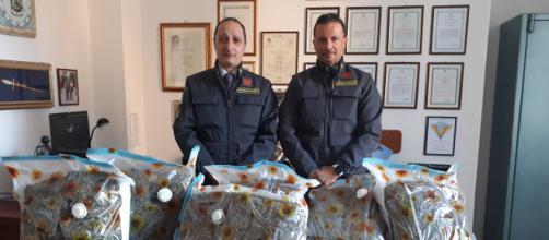 La droga nella spazzatura sequestrata dalla Guardia di Finanza