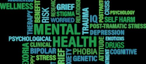 A mental health web. - [Image courtesy of Pixabay.com]