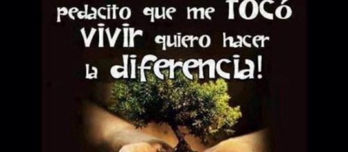 Contacto – Página 2 – Soy libre y vivo en paz y en Armonía conmigo ... - wordpress.com